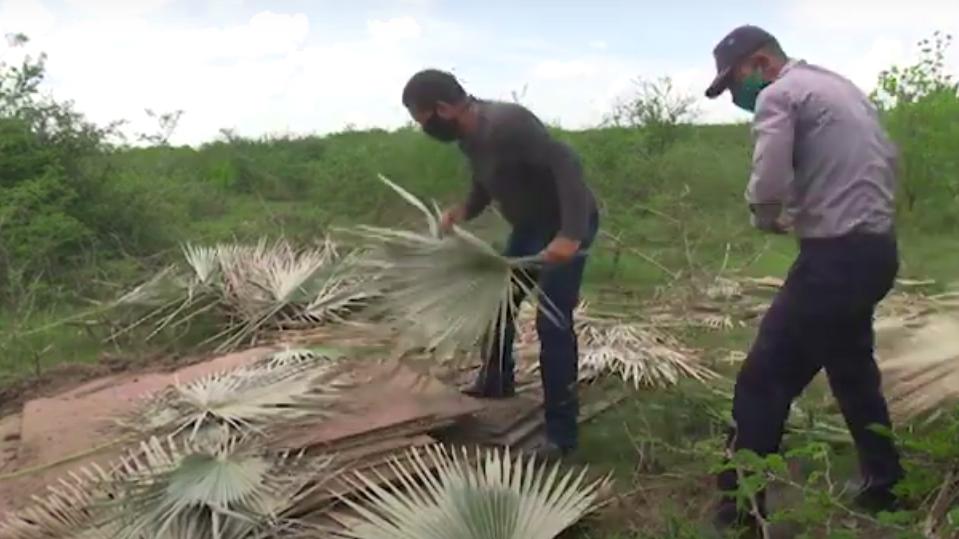 Autoridades cubanas decomisan 30 toneladas de acero escondidas en un campo de Las Tunas