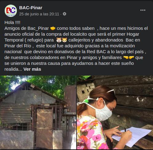 Activistas cubanos compran local en Pinar del Río para dar refugio a animales callejeros Foto:BAC-Facebook)