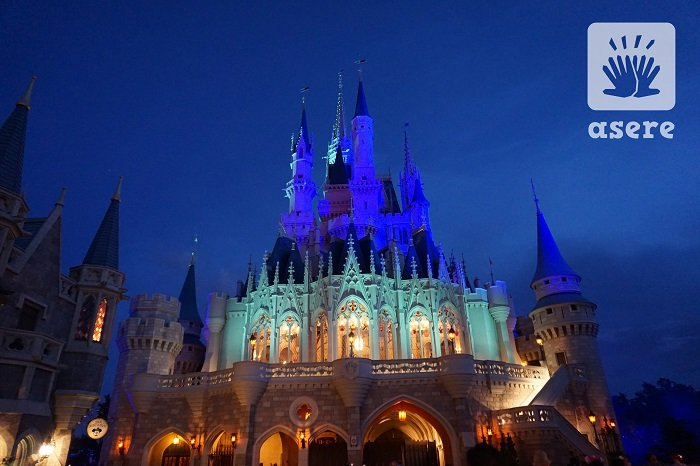 castillo de magic kingdown en disneyworld (10)